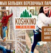 megakupon-odin-iz-samyh-bolshih-verevochnyh-parkov-v-rossii-30-min-ot-sankt-peterburga-v-verevochnyy-park-koshkino-park-2
